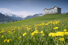 Hotel Villa Honegg*****S